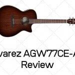 Alvarez AGW77CE-AR Review
