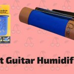 10 Best Guitar Humidifiers To Buy In 2020 | In-Depth Reviews