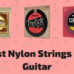 10 Best Nylon Strings For Your Guitar To Buy In 2021
