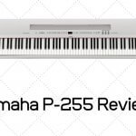 Yamaha P-255 Review - How Good Is This Piano?