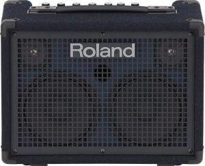 roland kc220